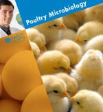 poultry microbiology brochure