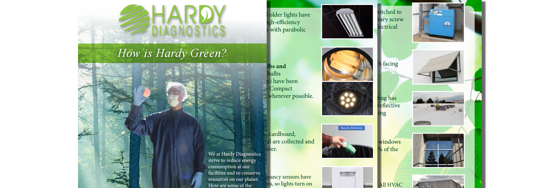 Green Efforts: Brochure Tiled