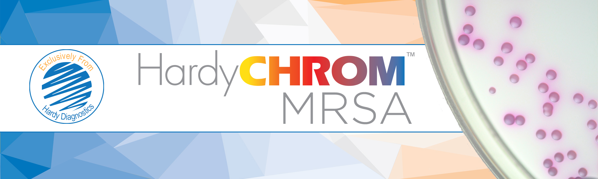 HardyChrom MRSA Chromogenic Culture Media Selective and Differential