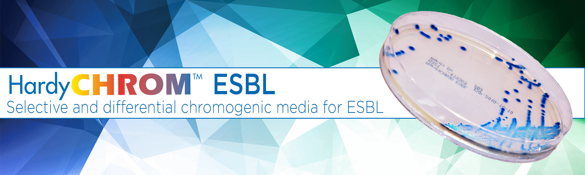 HardyCHROM ESBL Chromogenic and selective and differential media culture media for esbl extended spectrum beta lactamase