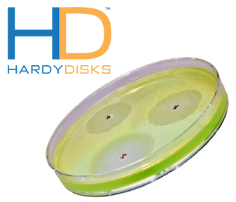 HardyDisk Featured Products